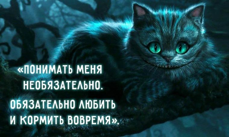 Цитата чеширского кота все было бы так если бы