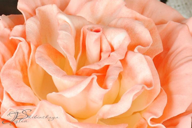 конкурс, конкурс с призами, конкурс работ, фоамиран, роза из фоамирана, фом, фоам