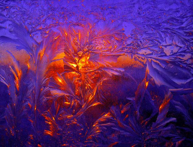 Морозной зимой, фото № 7