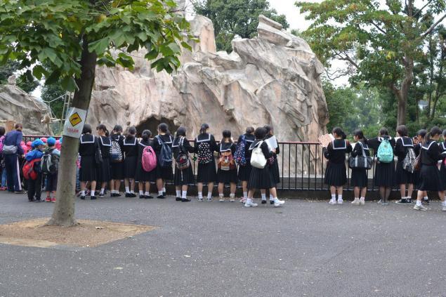 Дикий забег по Токио за 7 дней. День пятый. Зоопарк Уэно и детские магазины., фото № 6