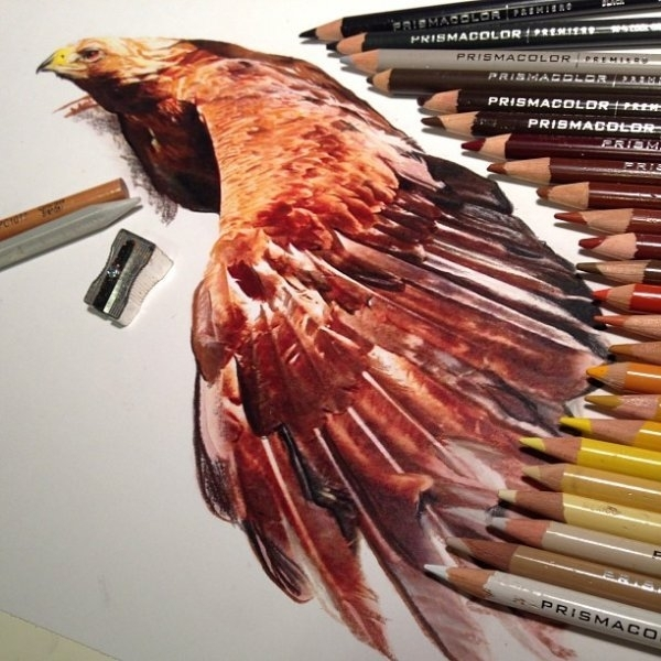 реалистичные  рисунки Карлы Миалинн,Karla Mialynne, рисунки карандашами