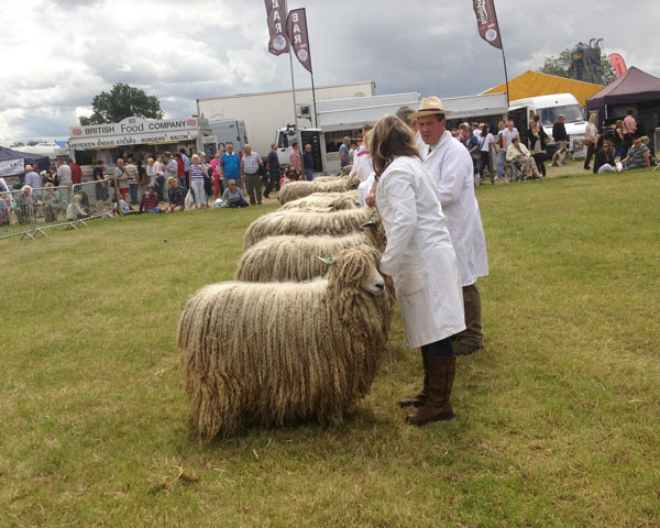 leicester longwool, флис
