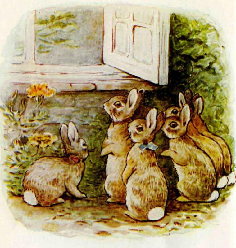 Интересные факты о Беатрис Поттер и ее знаменитых кроликах, фото № 8