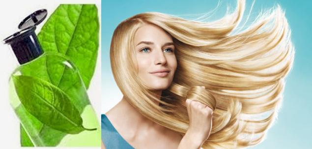 шампунь, основа для шампуня, концетрат шампуня, рецепт шампуня, идеальный шампунь, базовые масла для волос, травы, тип волос, изготовление шампуня