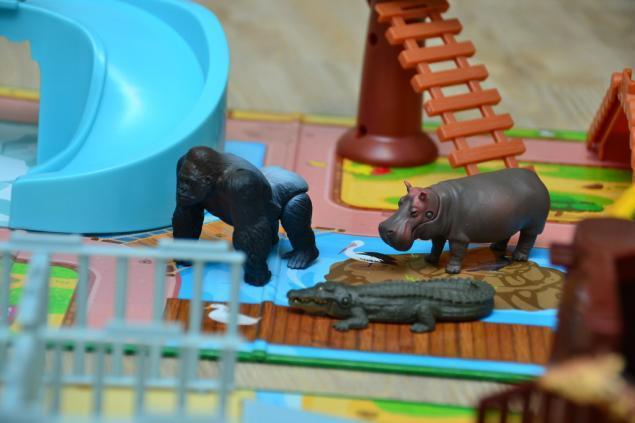 Дикий забег по Токио за 7 дней. День пятый. Зоопарк Уэно и детские магазины., фото № 78