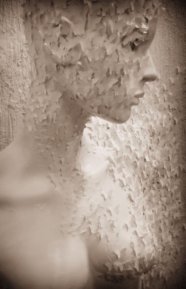 точка отрыва, мастерская художницы, картина из бабочек, современное искусство