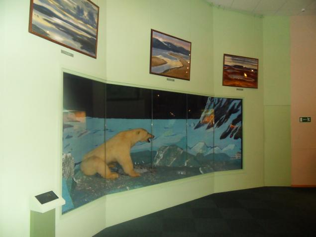 музей таймыра