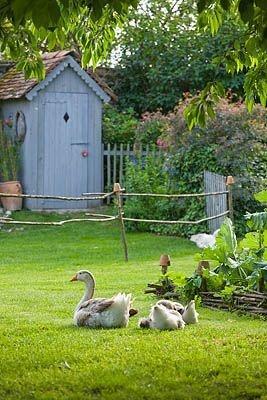 Я в саду! Заходите!, фото № 56