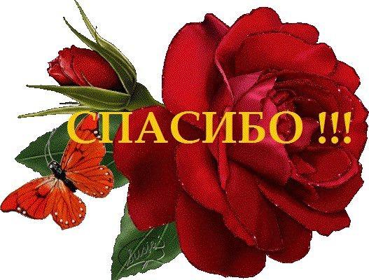 Картинки цветок с надписью спасибо