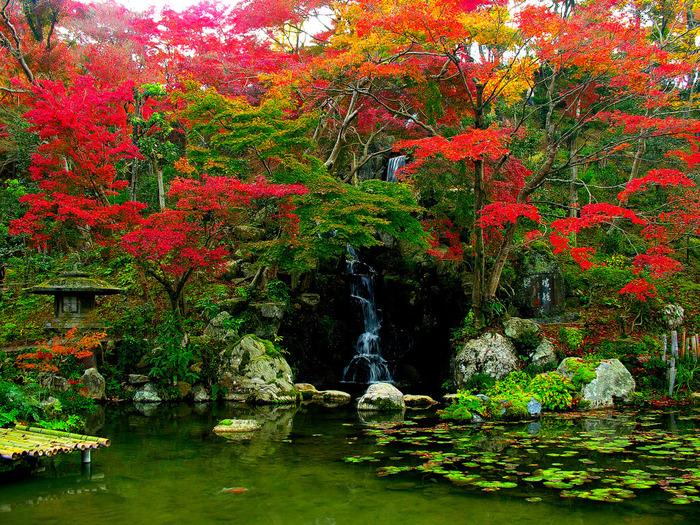 Микромиры: японские сады камней, фото № 5