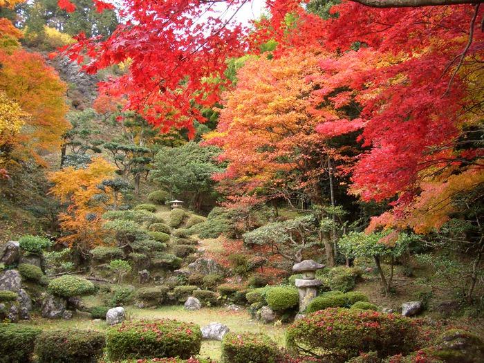 Микромиры: японские сады камней, фото № 8