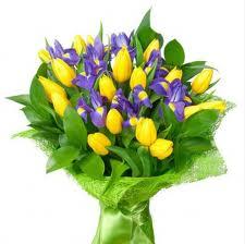 желтый, сиреневый, фиолетовый, зеленый, желто-фиолетовый, яркое колье, колье, яркое украшение