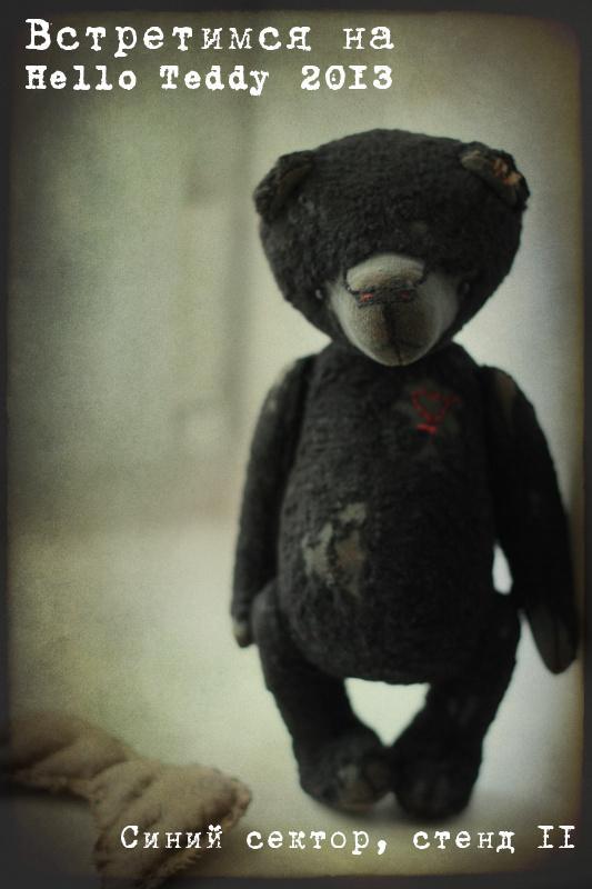 hello teddy, анна павельева