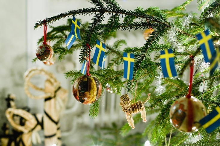 Christmas trees are very important in Swedish homes and you sometimes have to search for a while to find the perfect one. Every family decorates its tree differently but strings of lights, tinsel and Christmas tree balls are common decorations. It is also common to decorate the tree with straw figures and small Swedish flags. The Christmas goat is one of the very oldest Christmas symbols in Sweden and is often placed near the Christmas tree. Photo taken by: Helena Wahlman