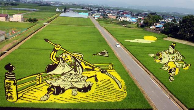 рисовые поля японцев