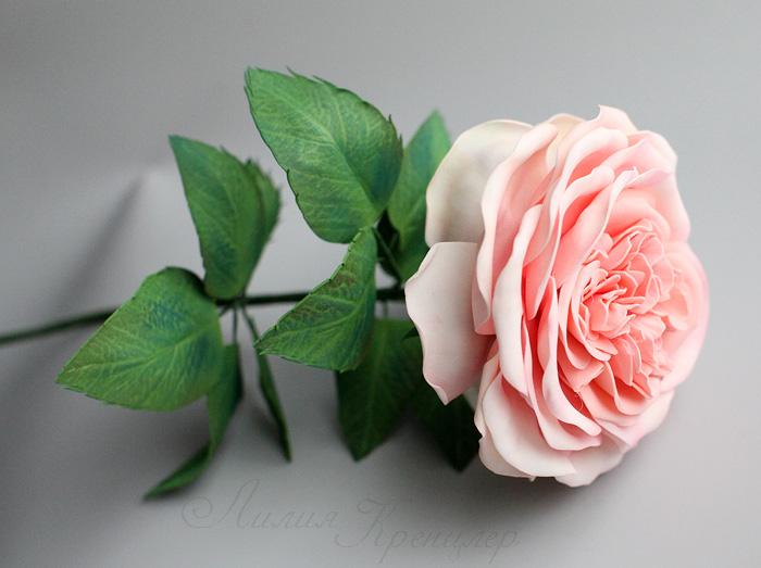 фоамиран, цветы из фоамирана, роза из фоамирана, пионовидная роза