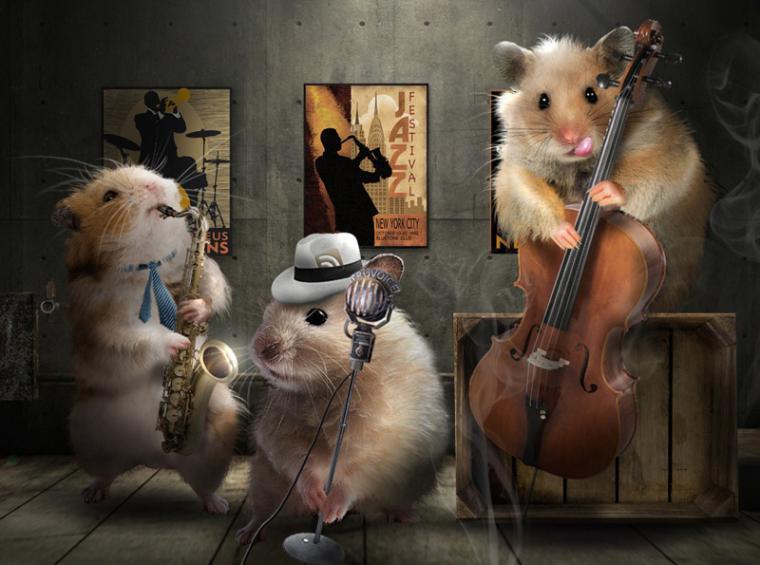 Прикольные открытки музыка