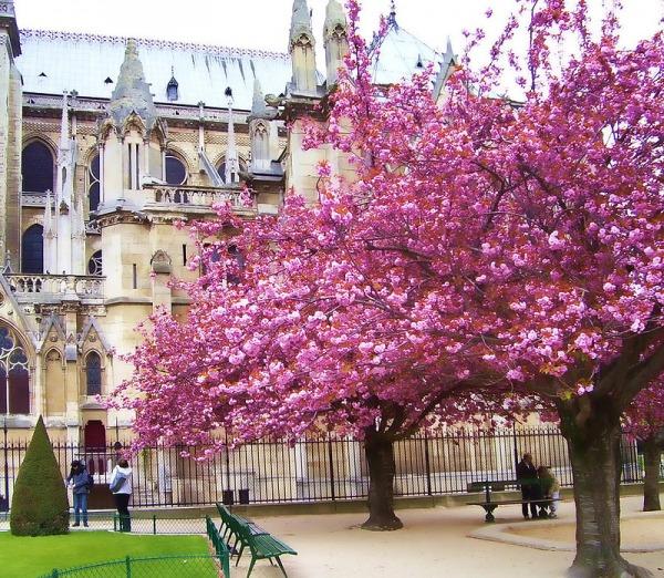 Весенний Париж, дыхание теплого ветра, фото № 32