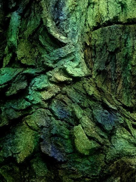 Bilo jednom jedno drvo - Page 2 120919173852