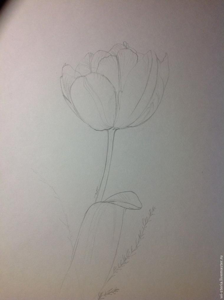 8 марта, рисуем тюльпан
