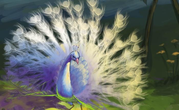 перо павлина, символ богатства