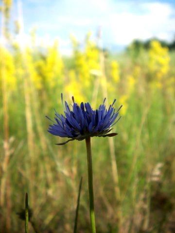 Истинная красота природы, фото № 6
