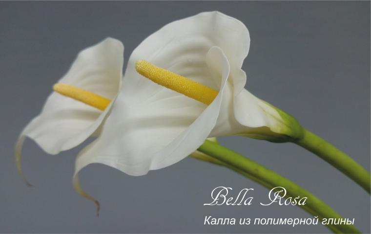 школа рукоделия, лепка цветов, реалистичная флористика, мастерская