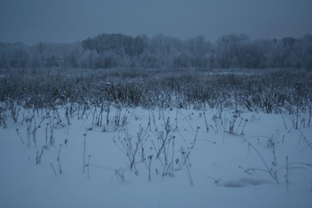 Русские края, фото № 12