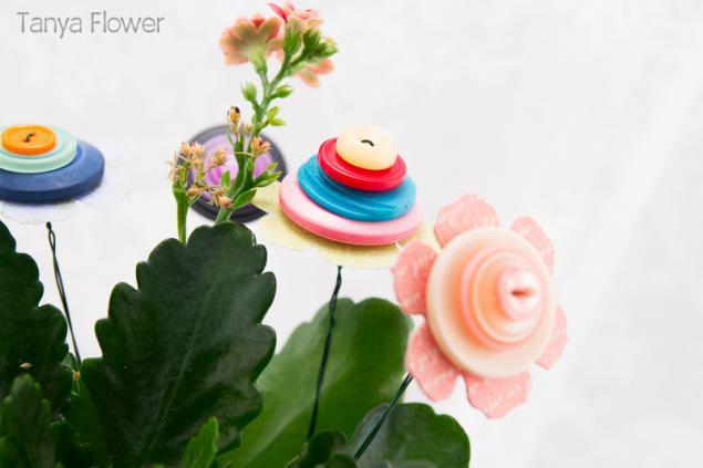 видео сюжет, tanya flower, мастер-класс
