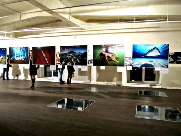красивая выставка