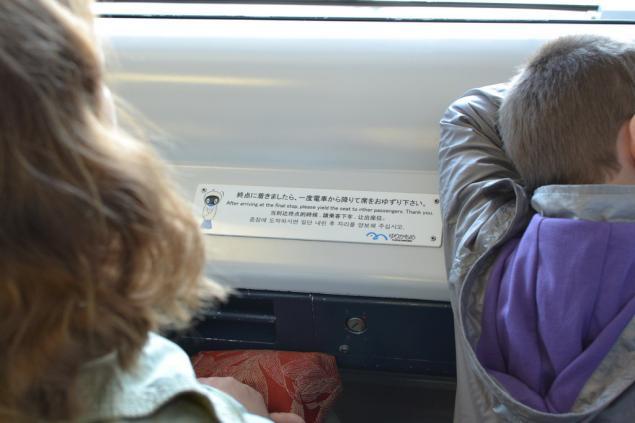 Дикий забег по Токио. День третий. Одайба., фото № 4