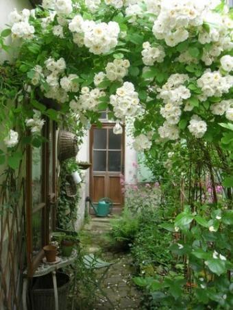 Я в саду! Заходите!, фото № 17