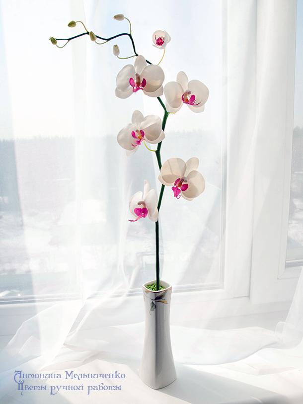мастер-класс, лепка цветов, лепка из полимерной глины, холодный фарфор, полимерная флористика, орхидея, ветка орхидеи