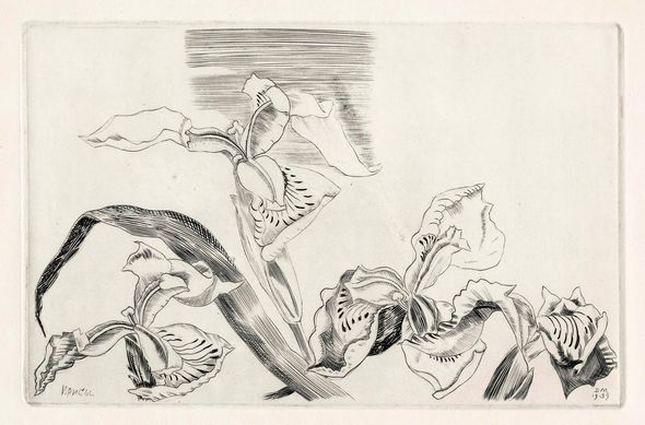 Черно-белая графика знаменитых художников, фото № 51