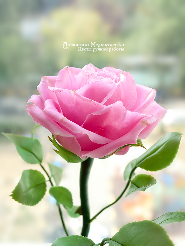 мастер-класс, мастер-класс по лепке, роза, анонс