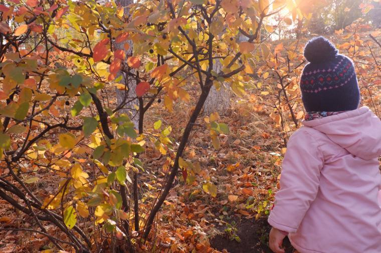 Осенние самарские прогулки - фотоотчет, фото № 4