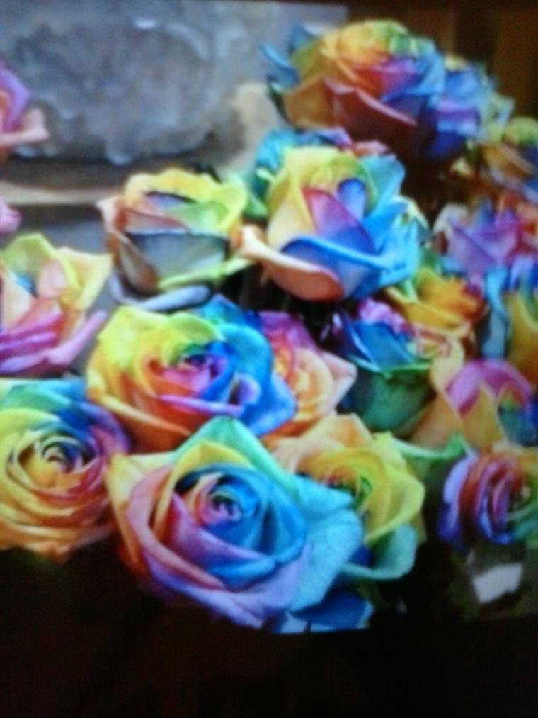 как сделать, красивые фотографии, розы, красивый подарок, красители, подарок своими руками, подарок женщине, подарок на 8 марта, подарок на день рождения, красиво
