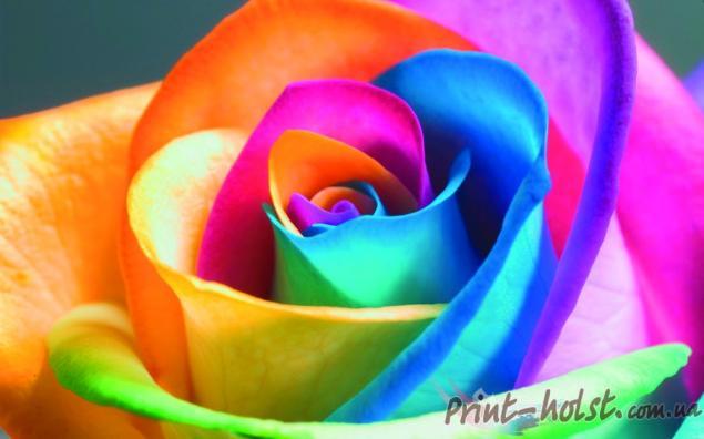 фоамиран, палитра, новые цвета фома