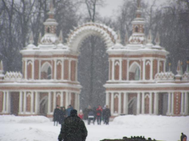 Царицыно в зимнем ракурсе., фото № 8