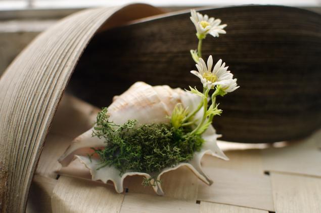 ромашка, полимерная глина, цветы из полимерной глины