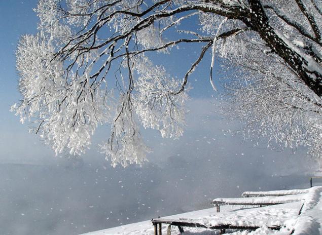 Морозной зимой, фото № 10