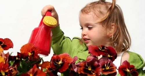 инструкция по уходу, цветы из глины