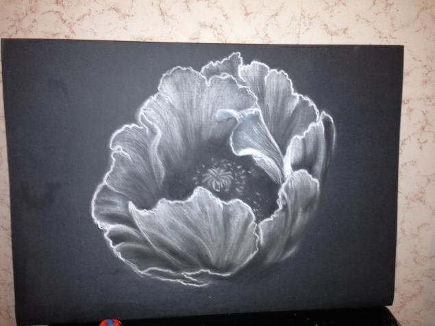 Как нарисовать цветы пастелью поэтапно для начинающих