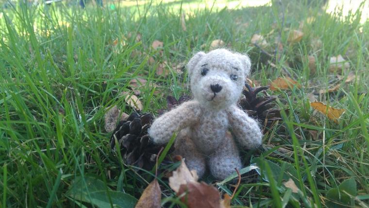мишки тедди, медвежонок в подарок