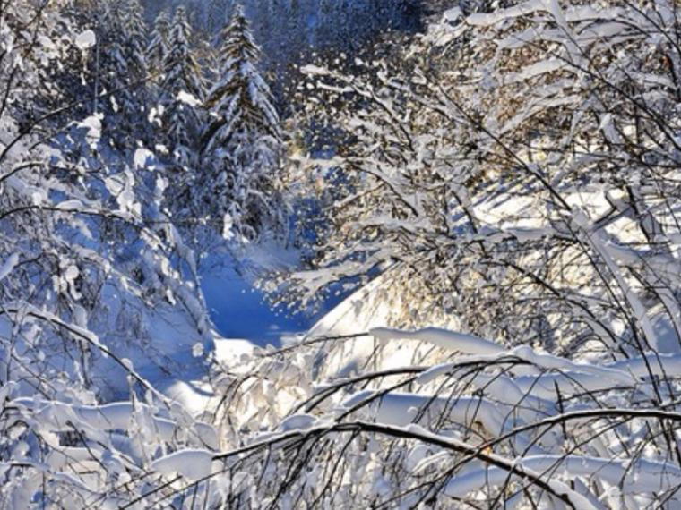 зима, снег, новогодние праздники, рукоделие, вышивка, шитье, уют