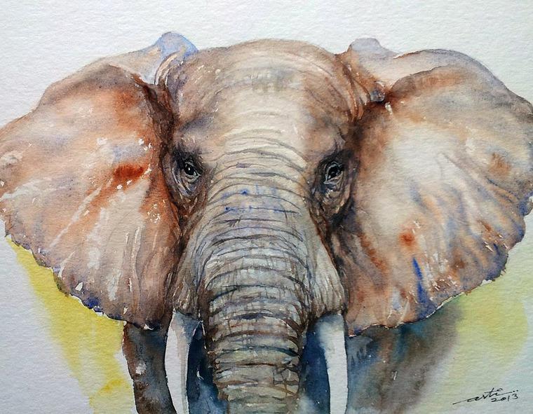 слоны картинки нарисованные