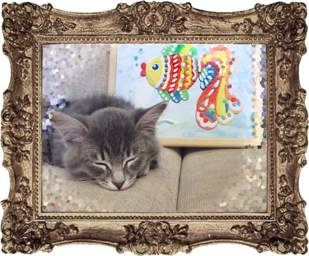 котенок, рыбка, кварцевая живопись, юмор