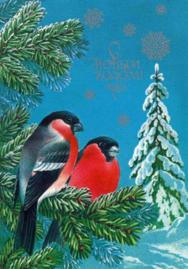 Почтовая, новогодняя открытка с снегирями