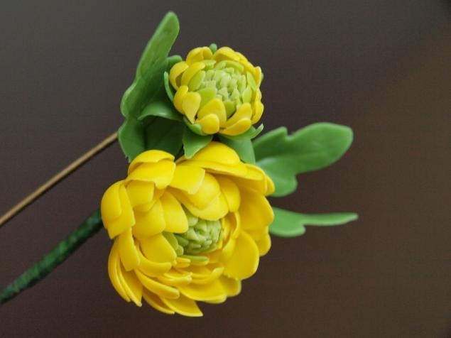 хризантема, холодный фарфор