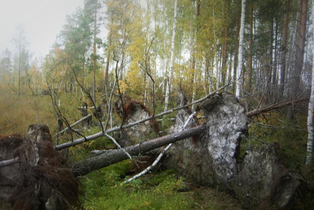 Русские края, фото № 3